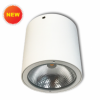 Đèn downlight trụ Led NSDL2236-73/NSDL2236-76